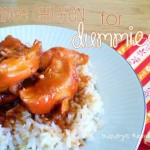 Orange Chicken For Dummies