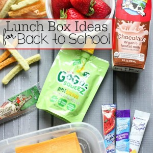 Lunch Box Ideas for Back to School