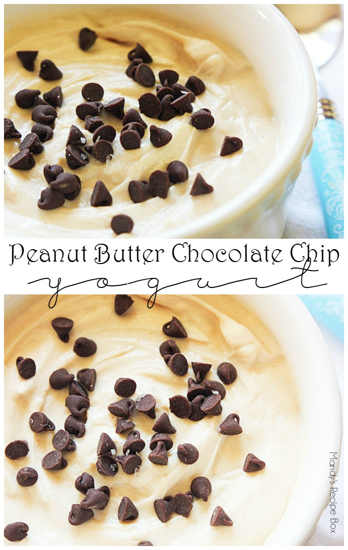 Peanut Butter Chocolate Chip Yogurt